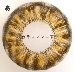 ローズベリー ホーリー(ブラウン)のレンズ表面/大きさ、デザイン