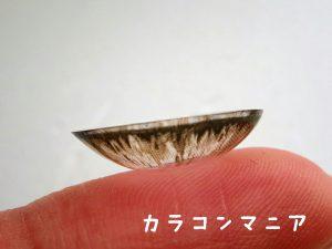 ロデオ ヴォヤージュ タヒチ(チョコ)のレンズの側面/デザイン、大きさ