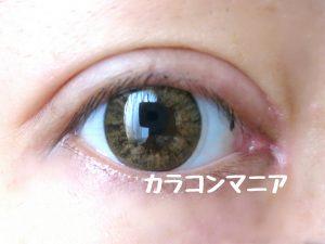 ザピエル/バニラキャンディ(ブラウン)のレポ画像/室内から撮影
