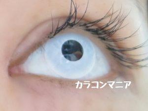 ハロウィン・コスプレ用白カラコン/ジーニーガールズ (マットホワイト)は少しの動きなら視界は良好