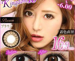 kingdom16-brown-top-image