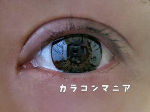 jill Honey Bunny/ジル ハニーバニー(チョコ)のレビュー画像/室内での見え方