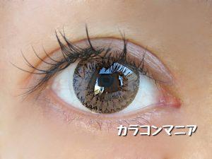 eye-tiamo-classybrown-sun