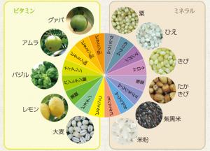 pachiri-uinku-bijin-tsuhan-seibun-multivitamin-mineral