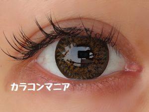 eye-mnkr-kingdom17-brown-sun