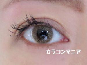 eye-thepiel-european -eyes-brown-room