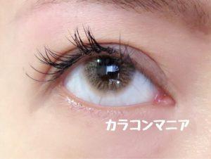 eye-thepiel-european -eyes-brown-up