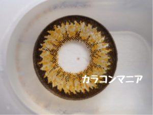 ロデオ ピンキーデビルmegaメガ(ブラウン)の大きやや着色直径