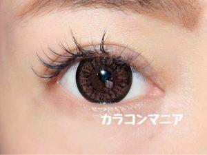 ラブコンCookieクッキー(チョコ)のレポ画像/室内でフラッシュ撮影