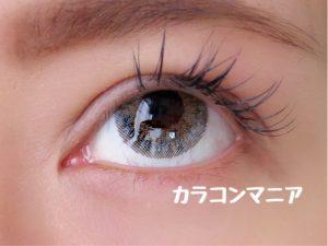 eye-revy-mimosa-gray-up