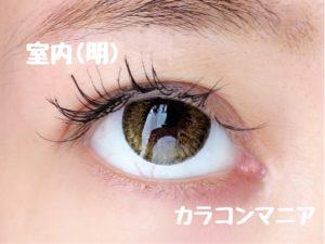 eye-rodeo-universe-brown-up