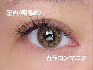 eye-teamo-shell-brown-room-bright