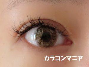eye-teamo-shell-brown-room-dark