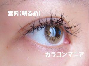 eye-teamo-shell-brown-side-room