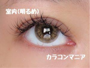 eye-teamo-shell-brown-up-room