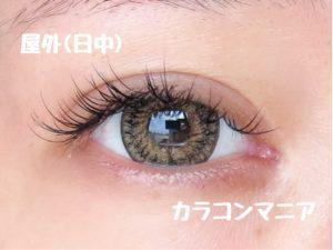 eye-rodeo-voyage-palm-brown-sun