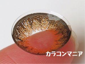 ジルハニーバニー(ブラウン)のレンズ表面/大きさや着色直径