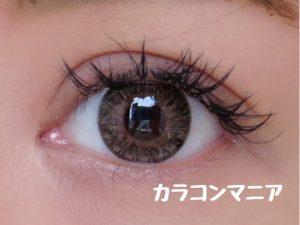 eye-jill-macaron-vanilla-brown-normal